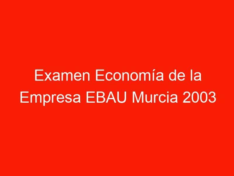 examen economia de la empresa ebau murcia 2003 junio 4209