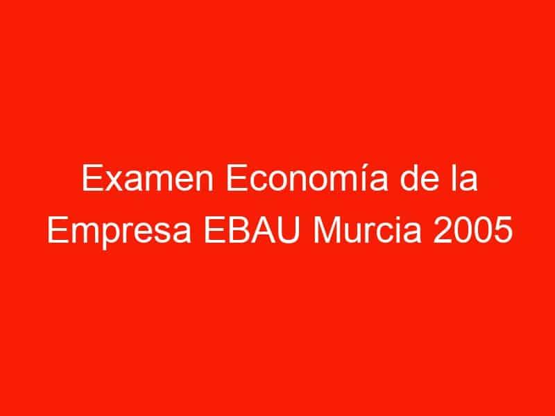 examen economia de la empresa ebau murcia 2005 junio 4213