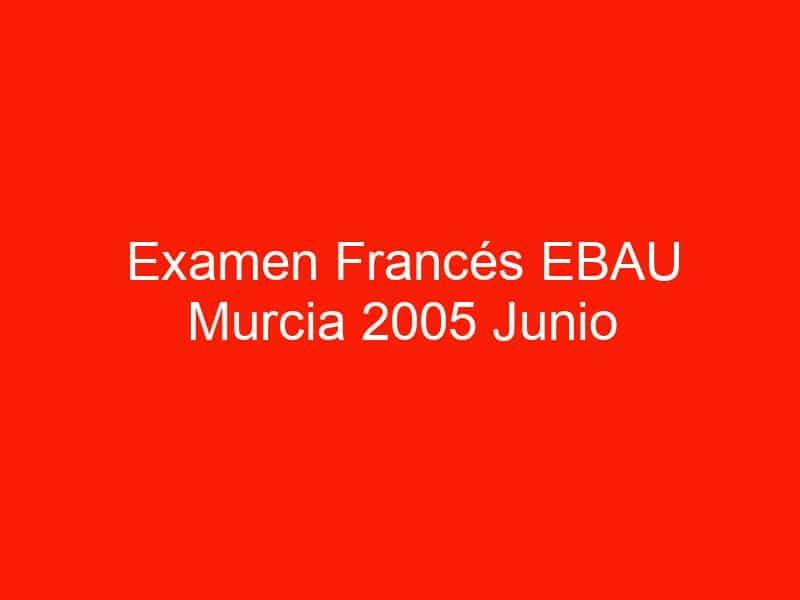 examen frances ebau murcia 2005 junio 3985