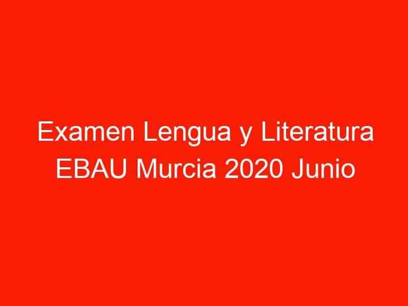 examen lengua y literatura ebau murcia 2020 junio 4319